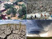 世界气象组织承诺将协助越南提高灾害预警能力