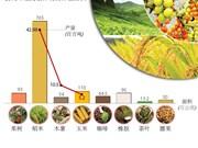 图表新闻:2018年越南种植业力争出口额超过210美元