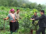 莱州省发挥现有优势来发展温带水果树种植业