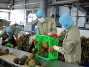 越南提出2018年出口总额达4770亿美元的目标