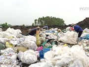 塑料袋对环境与人体健康的危害