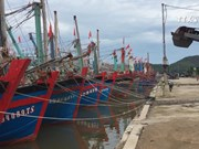 台风过后乂安省渔民准备渔具出海捕捞
