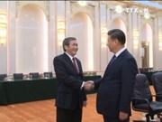努力推动越中两国关系稳步健康发展