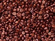 越南咖啡产业力争至2030年将出口额提升为50亿至60亿美元