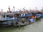 31艘平定省渔船在菲律宾部分群岛躲避9号台风