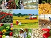 越南农业引资资金占外资总额的1.3%