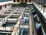 多样化北宁省农村地区洁净水供应模式
