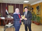 越南与埃及推动广播领域的合作