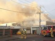 澳洲一越南购物中心发生火灾  财产损失约达1200万澳元
