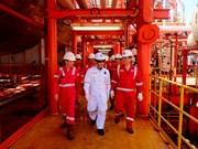 越南PVEP 2016年石油开采量预计达555万吨