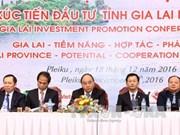 阮春福总理出席嘉莱省投资促进会