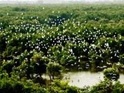 同塔梅最具魅力的生态旅游区——高琼