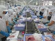 2016年越南对中国的查鱼出口额达逾3亿美元