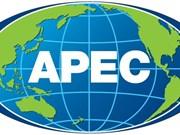2017年越南APEC峰会年的宣传海报设计运动正式发动