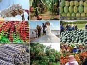 越南安江省力争2017年出口额达8.2亿美元