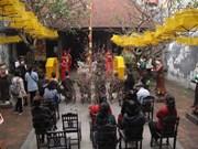 """河内市中心举行""""越南春节""""活动"""
