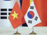 越南与韩国关系中的经济合作印迹