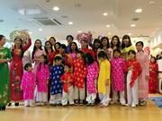 旅居日本神户市越南人举行喜迎2017年丁酉春节活动