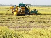 2016越南农产品出口纵观