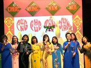 旅居捷克和埃及越侨举行喜迎2017丁酉春节活动