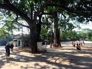 越南乡村生活空间的组织结构