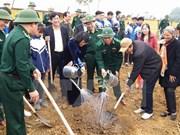 邓氏玉盛副主席出席和平省 2017丁酉年新春植树节启动仪式