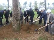 河内市市委书记黄忠海呼吁首都居民积极参加植树活动