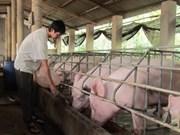 越南畜牧业因进行结构重组而实现突破性增长