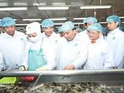 阮春福总理参观金瓯省明富水产集团虾类加工模式