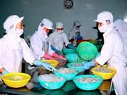 越南工商部要求澳大利亚早日取消对虾和未煮熟的虾肉进口暂停令