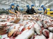2017年越南查鱼出口量有望增长20%