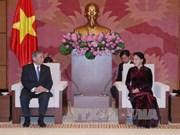 越南国会主席阮氏金银会见日本群马县代表团