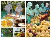 2017年越南出口活动将集中于优势产业