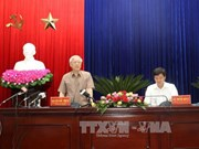 阮富仲总书记:薄辽省应优先发展高科技优质农业