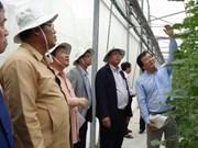 老挝占巴塞省省委书记兼省长本通•迪维塞访问胡志明市