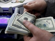 21日越盾兑美元中心汇率保持稳定