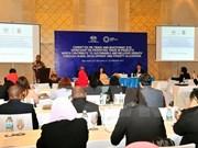 2017年越南APEC峰会:APEC所属七个机构的相关会议纷纷举行