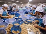 2017年越南腰果出口额有望达30亿美元