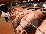 加拿大将向越南食品安全保障工作资助1500万加拿大元