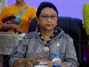 印尼与法国加大合作力度