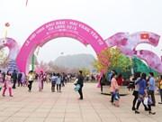 2017年樱花—安子黄梅花节将于3月中旬在下龙市举行