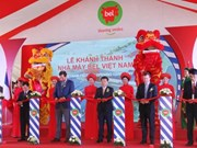 平阳省第二家年产量1万吨奶酪生产厂投入运营