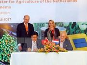 荷兰与越南分享农业可持续发展经验