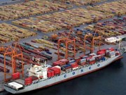 中国与东盟水果班轮直航航线正式开通