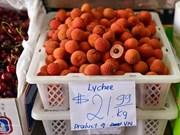 越南企业进军澳大利亚市场的机会