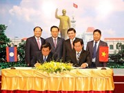 胡志明市与老挝川圹省加强图书馆和博物馆领域合作