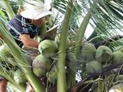 2017年第一季度越南槟椥省出口金额增长8%