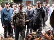 河江省开展越中边境地区食品安全检查