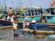 广宁姑苏的海蜇捕捞业