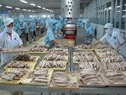 坚江省商品出口金额同比下降20%